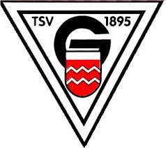 Logo TSV Geislingen 1895 e.V.